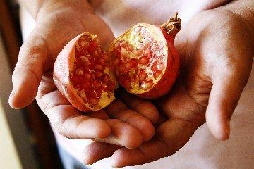 _mg_0292jpg_pink_pomegranate